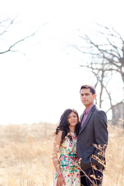 Le Cape Weddings - Trisha and Sashin Engagements_-57.jpg