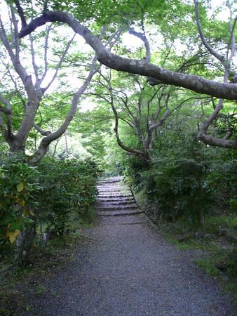2008-06-11 Japan_May_2008 -Niko Kyoto
