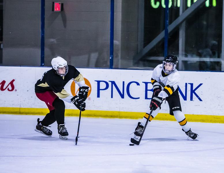 Bruins-144.jpg