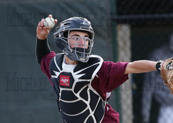 Baseball -2013
