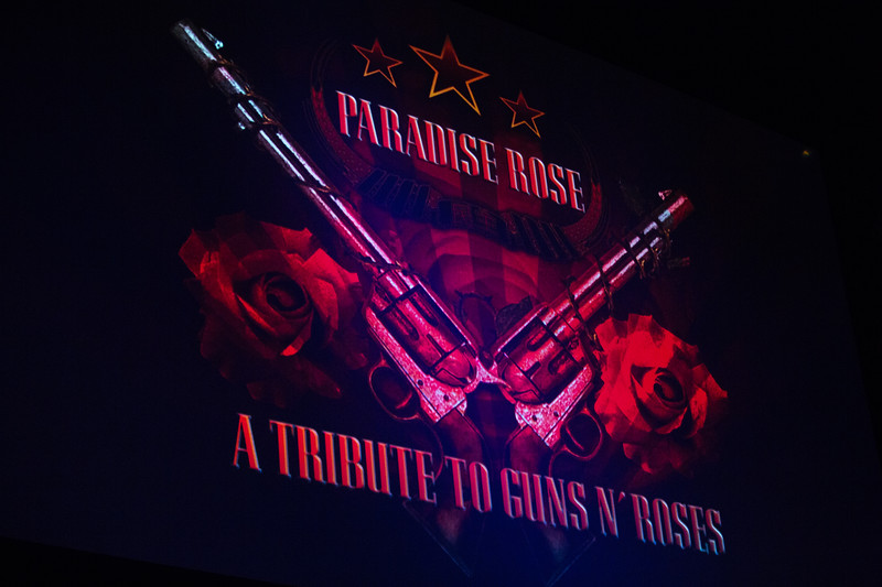 Paradise Rose - The Queen - March 2018-8.jpg