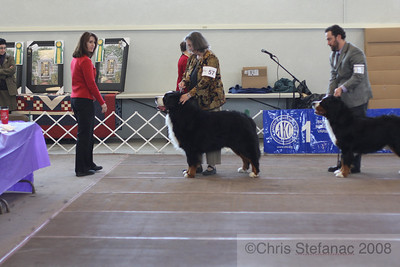 Best of Breed-PV 09