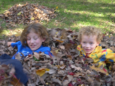 Leaf pile pictures