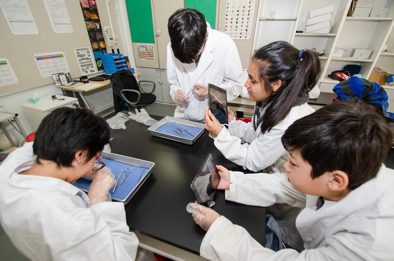 Grade 7 Science-25.jpg