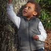 Young african-american boy standing by a tree while pointing to the sky.