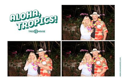 Aloha Tropics (photo strips)