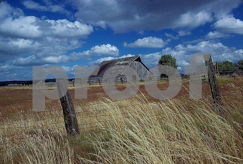 Barn, Littlerock 78.03.027.jpg