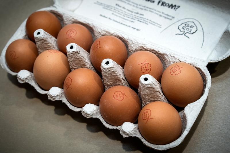 Eggs 94.jpg