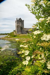 Boyne Valley - Galway