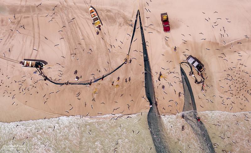 Sardine Season (106)- Dhofar.jpg