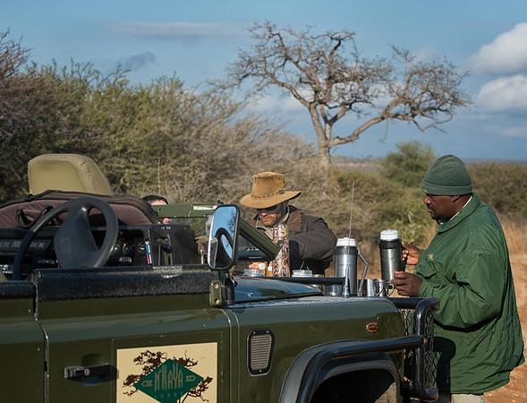 African Safari - Thornybush, S. A. - August 2014