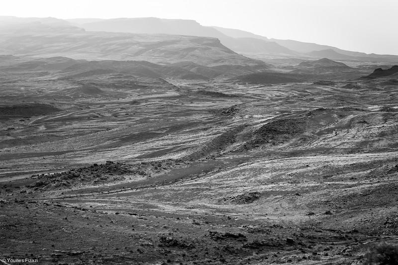 Desert Blues-1498.jpg