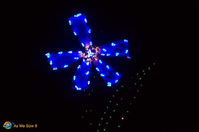 Lights-In-Bloom-05760.jpg