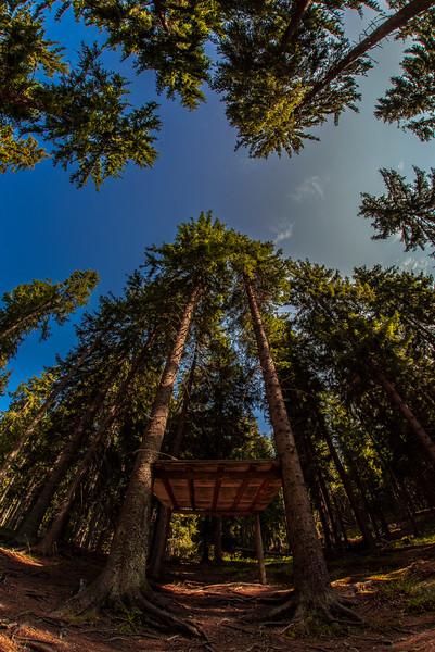 Cascada Cailor (34).jpg