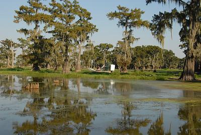 Louisiana's Atchafalaya Swamp near Breaux Bridge