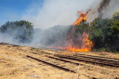 Rail Trail Fire