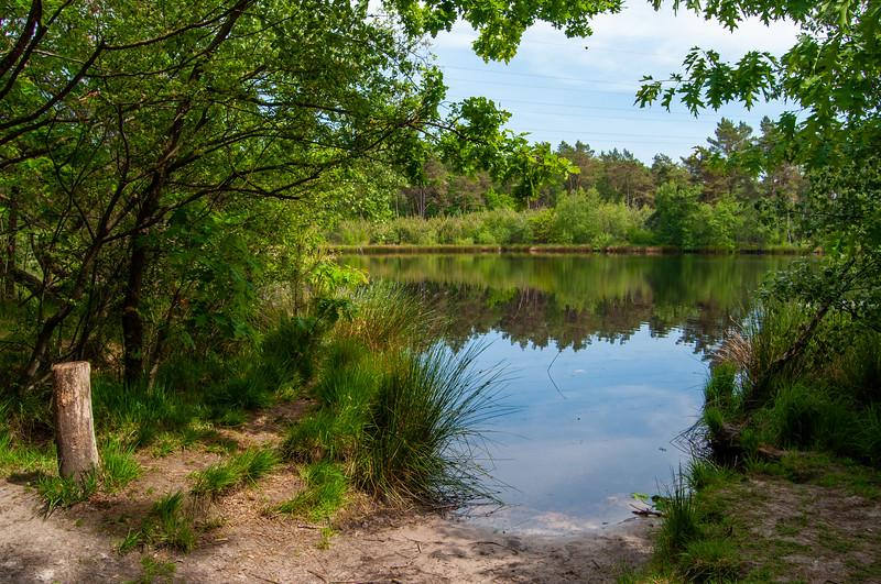 Nationaal Park Hoge Kempen - Duinengordel, omgeving Donderslag 28.jpg