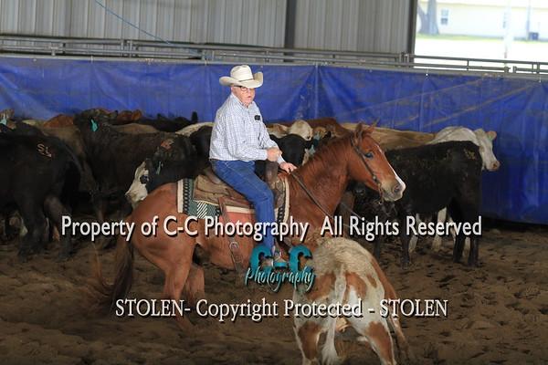 25. Nov Horse CMCHA 4/17