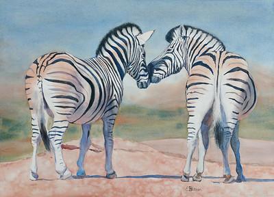 """Zebra Love"" (watercolor) by Elizabeth Burin"