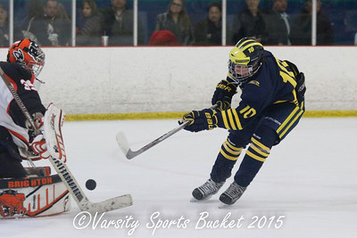 Hartland at Brighton Hockey