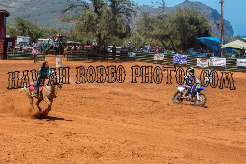 IRON HORSE RACE