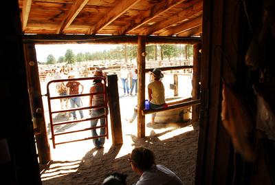 2009 Cowboy Cowgirl Camp