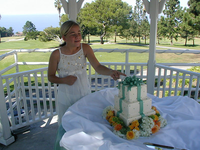 Our Wedding Reception 2006