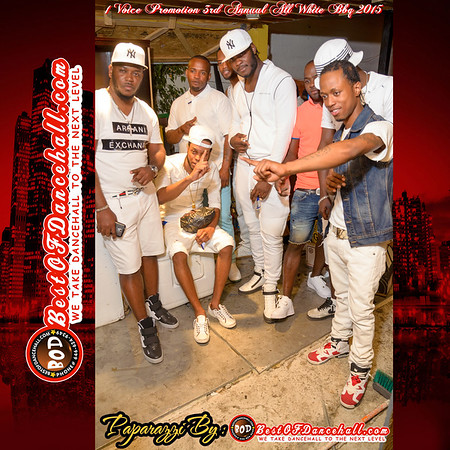 5-25-2015-MOUNT VERNON-1 Voice Promotion 3rd Annual All White BBQ 2015