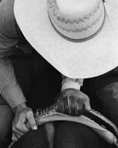 The Rodeo Life.