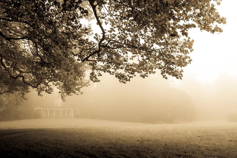 autumn_15_012.jpg