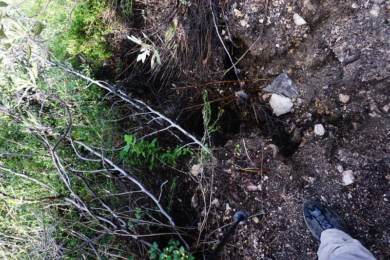 20160218034-Gabrielino Trail Scouting.JPG