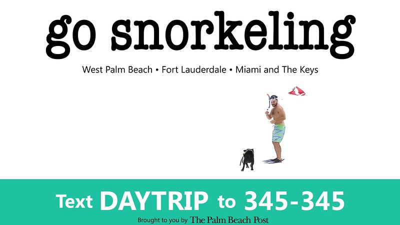 _DAY TRIPPIN - NEW COMMERCIAL 1 go snorkel_PBP.mp4