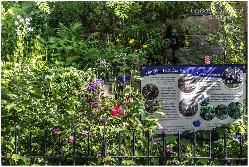 West Port Community Garden (1)