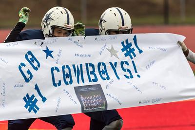 Patriots vs Cowboys (7 November 2015)