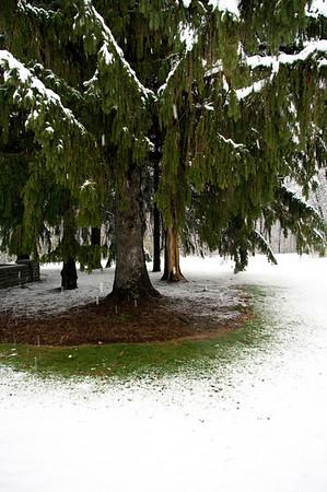 First_Snowfall_2010