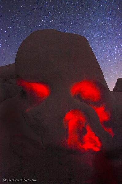 _MG_0912jtree skull rock light paint.jpg
