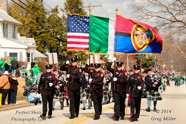 St Patrick's Day Parade 2014
