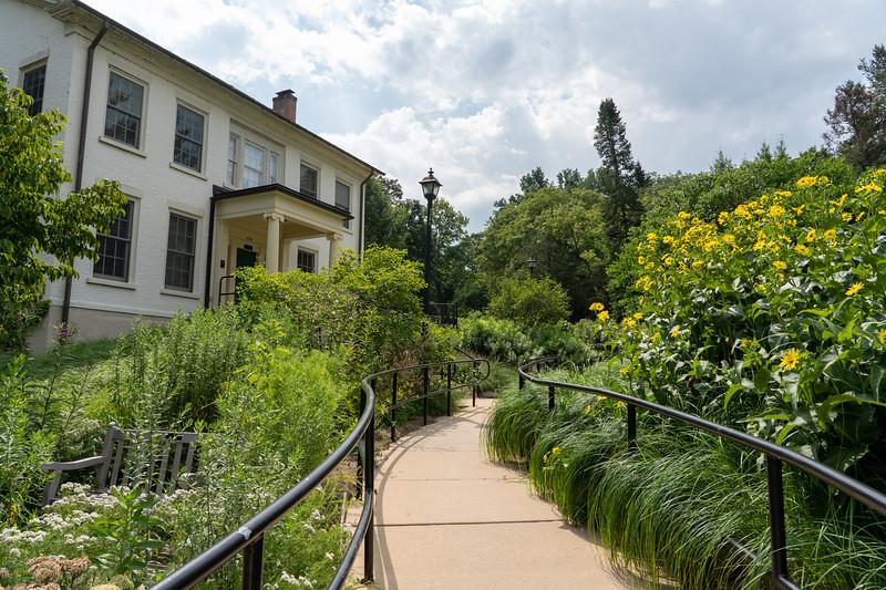 Nichols Arboretum in Ann Arbor