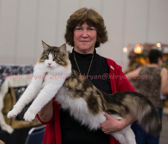 CatShow2014011_1.jpg