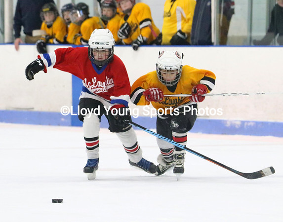 Mclaughlin_Bruins_Canadiens