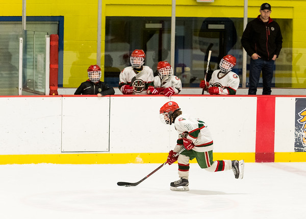 NCWC Squirt A vs Wizards 2/24/18