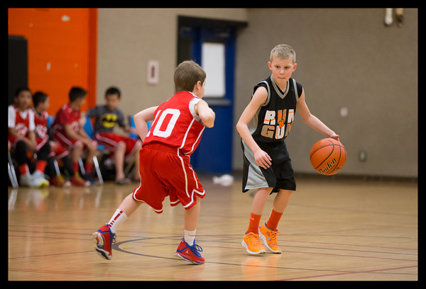 Basketball/Volleyball