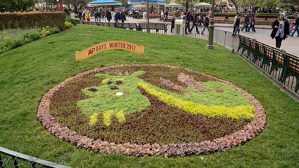 Disneyland Resort, Disneyland, Annual, Passholder, AP, Days