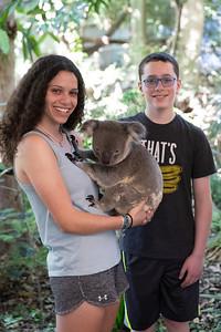Lone Pine Koala and Kangaroo Sanctuary