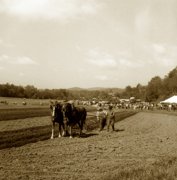 Tenth Annual WWC Field Day
