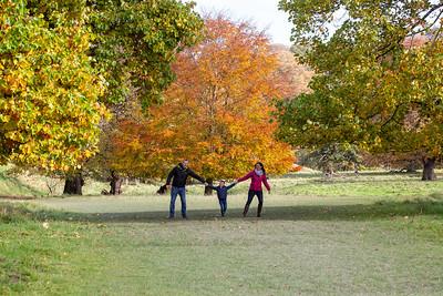 Chew Family Tree Shoot