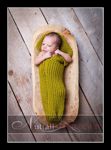 Noah Newborn 34.jpg