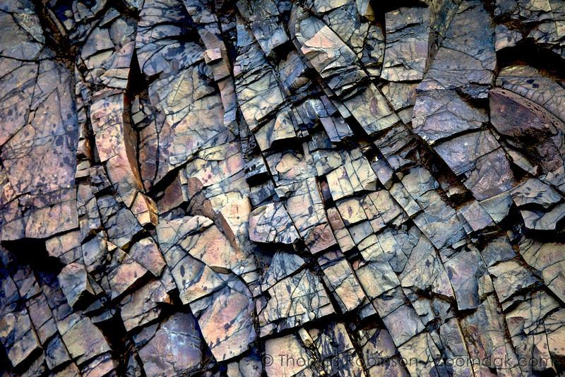 Oregon Coast Rock Texture