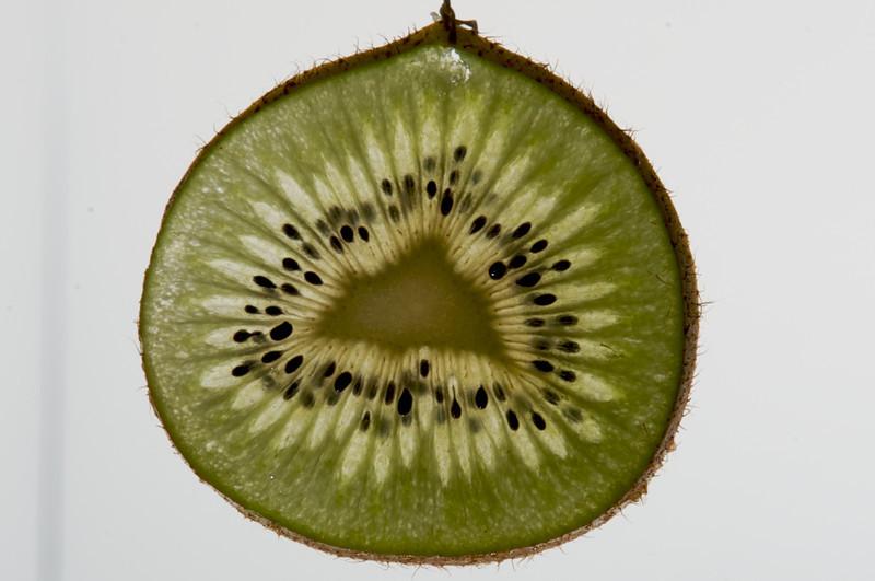 Model Fruit (5).jpg