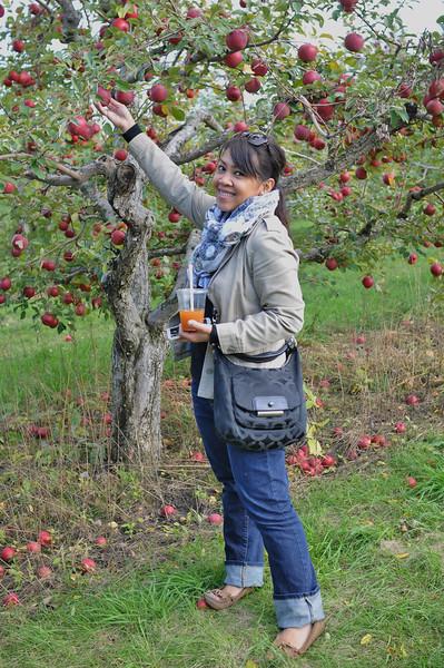 2014-10-04 Minnetonka Orchards 034.JPG